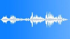Laughs_KidsVI Sound Effect