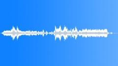 Laughs_KidsXI - sound effect