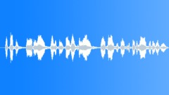 PrisonRiotAnnouncer Sound Effect