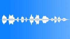 PrisonRiotAnnouncrIII - sound effect