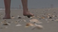 Stock Video Footage of Feet walking on the beach of shells