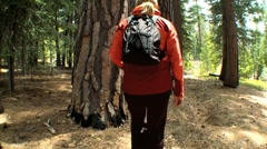 Female Trekking Through a National Park - stock footage