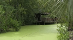 Jungle river house on the water Stock Footage