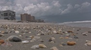 Stock Video Footage of Sea Shells on the Beach of condos