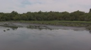 Swampy river air boat ride Stock Footage