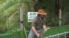Taping an alligators mouth shut - stock footage
