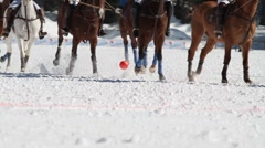 Polo sport in winter Stock Footage
