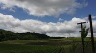 Napa Valley Clouds Time Lapse HD Stock Footage
