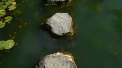 Walking on stepping stones - stock footage