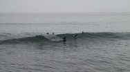 Surfers at Ribeira Quente Stock Footage