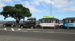 Tourist train - stock footage
