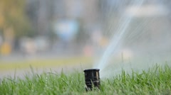 Watering of grass Stock Footage