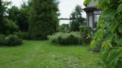 Stock Video Footage of Small garden at backyard in summer day