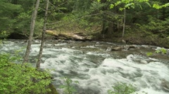 Lewis River 14 - stock footage