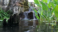Waterfall and Stump - stock footage