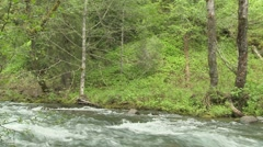 Lewis River Twin Falls 01 Stock Footage
