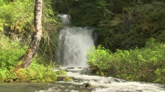 Lewis River Twin Falls 03 Stock Footage