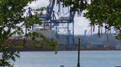 Mangrove and Commercial Docks - stock footage