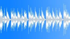 Slap Bass Groove - stock music