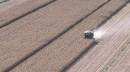 Stock Video Footage of elevated view of corn harvesting