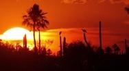 Stock Video Footage of Esteros Sunset