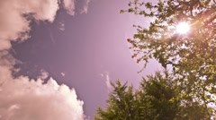 Time Lapse of Clouds, blue sky and trees - stock footage