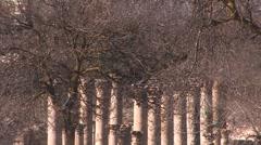 Roman settlement Stock Footage