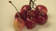 Stock Video Footage of Cherry 2