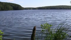 Scenic Pond 02 Stock Footage