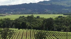 Northern California Napa / Sonoma Valleys HD - stock footage