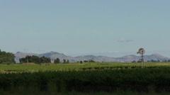 Grape fields Pan View HD Stock Footage