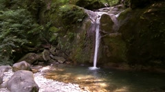 Waterfall in a forest in the North Caucasus - stock footage