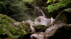 Waterfall in a forest - stock footage