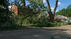 Damage to trees and homes created by severe wind sheer Stock Footage