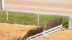 Horse riding on the racetrack dramatik footage Stock Footage