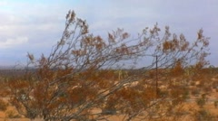 Windy, Stormy Day In The Mojave Desert 1 Stock Footage