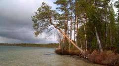 Lake in a taiga 1 - stock footage