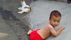 A Baby and A Cat Stock Footage