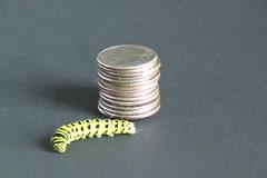 Caterpillar relief Stock Footage