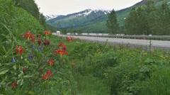 Alaskan Vacation Highway 1 - stock footage
