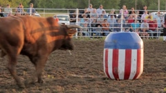 Stock Footage - Rodeo - Bull knocks over barrell with clown in it. Stock Footage