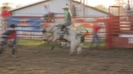 Stock Video Footage of Stock Footage - Rodeo - Bull ride - short