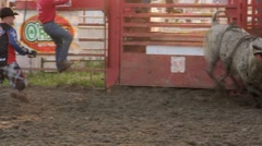 Stock Footage - Bull going wild in the ring. Stock Footage