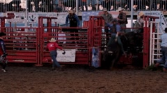Stock Footage - Bull Rdier - Short Clip! Stock Footage