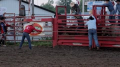 Stock Video Footage of Stock Footage - Bull Rider, Brown Bull