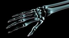 Hand bones LOOP Stock Footage
