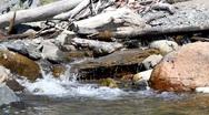 Flowing creek in summer Stock Footage