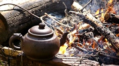 Tea party in forest 03 Stock Footage