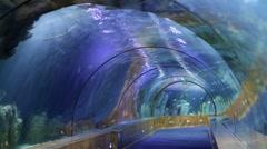 Underwater Tunnel Stock Footage