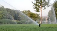 Stock Video Footage of Watering of grass